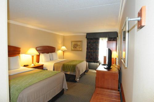 Comfort Inn & Suites Anaheim Photo