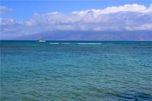 Kahana Reef #315 Photo