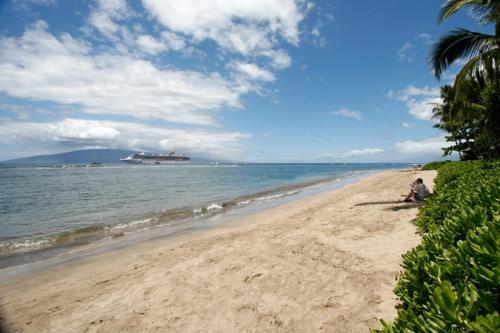 Lahaina Shores #225 Photo