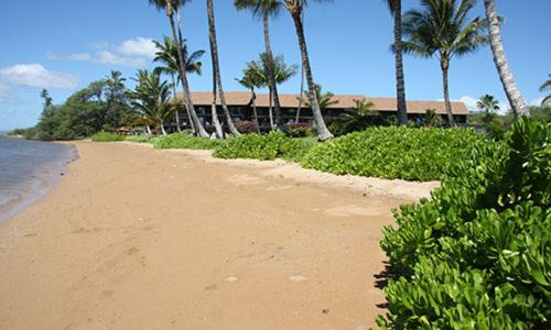 Molokai Shores 211 Photo