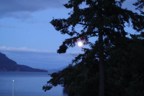 Morning Moon: Oceanfront Guest Suite Photo