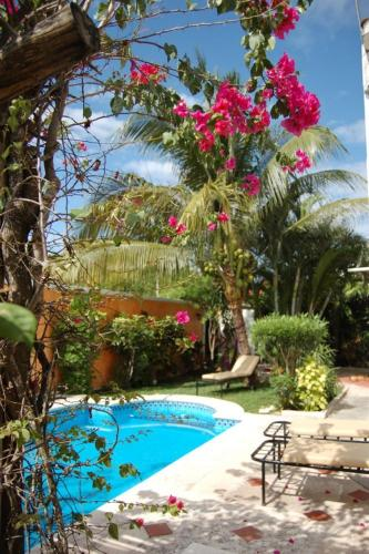 Beachouse Dive Hostel Cozumel Photo