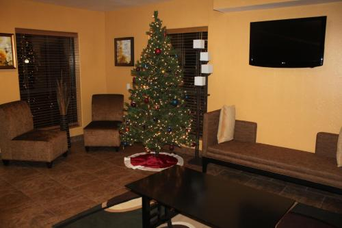 Texas Inn and Suites Raymondville Photo