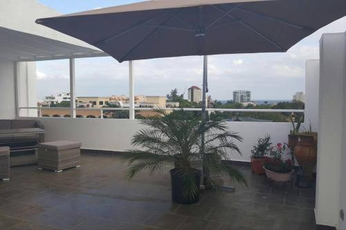 Penthouse with Private Rooftop with BBQ, Santo Domingo
