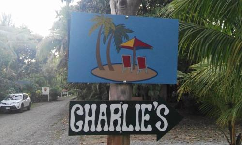 Charlie's Jungle House Photo