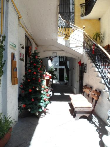 Reviews of hotels in Puebla