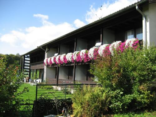 Pension Haus Hochstein