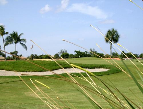 Shula's Hotel & Golf Club Photo