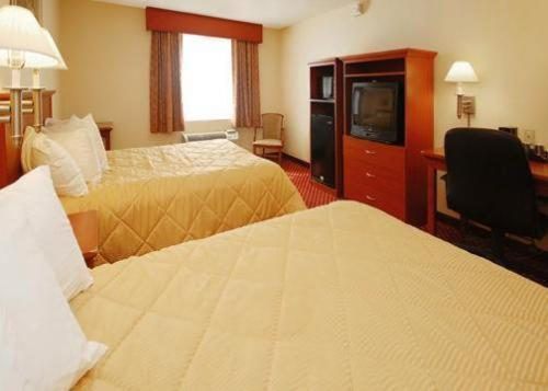 Comfort Inn Albany/Glenmont Photo