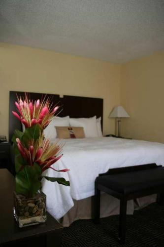 Hampton Inn & Suites Orlando-John Young Parkway/South Park photo 3