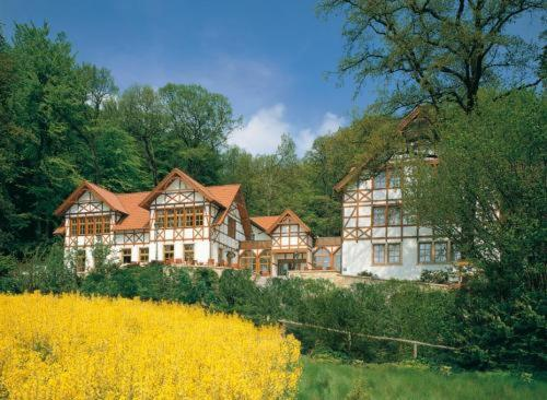 Ringhotel Der Waldkater