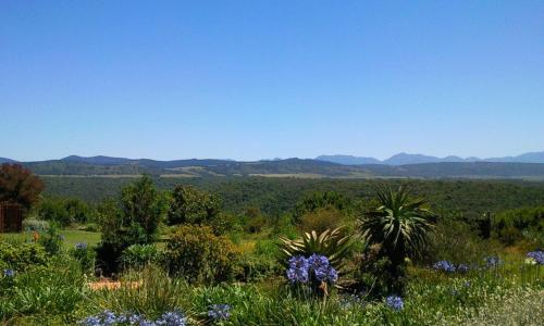 Protea Wilds Retreat Photo