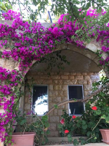Old Souk Guest House, Jounieh