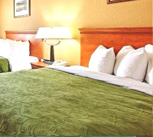 Country Inn and Suites - Hinesville Photo