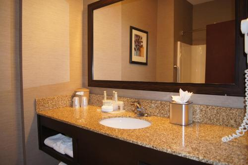 Holiday Inn Express Hotel & Suites Buford-Mall Of Georgia - Buford, GA 30518