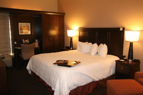 Hampton Inn Tuscaloosa-University Photo