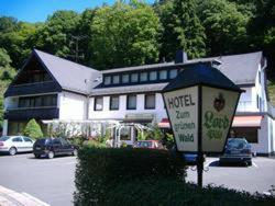 Hotel Zum grnen Wald