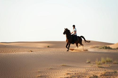 Al Maha Desert Resort, Dubai, UAE, picture 15