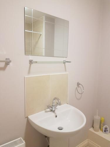 Top Floor Apartment in Heart of the Cathedral Quarter, Belfast