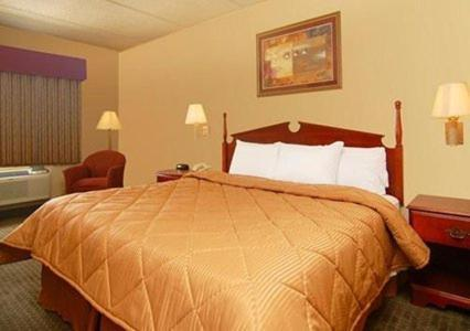 Comfort Inn & Suites Leeds Photo