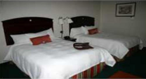 Hampton Inn Sturbridge Photo