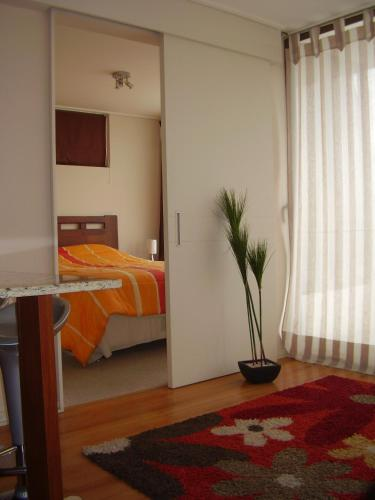 Booking Beach Viña Santiago Photo