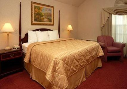 Comfort Inn Plainwell Photo