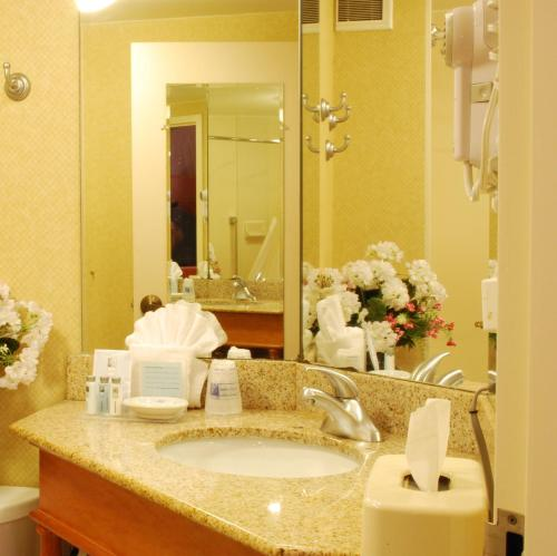 Hampton Inn Tampa International Airport/Westshore in Tampa