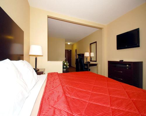 Comfort Inn & Suites Saratoga Springs Photo