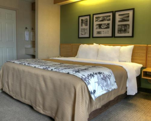 Sleep Inn & Suites Kingsport Photo