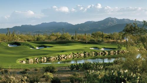 The Ritz-Carlton Dove Mountain - Marana, AZ 85658