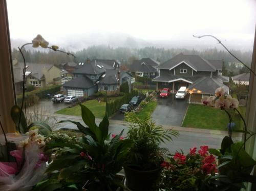 Squamish Highlands Bed & Breakfast Photo