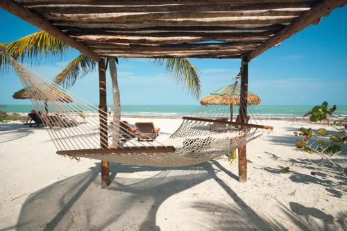 Zomay Holbox Photo