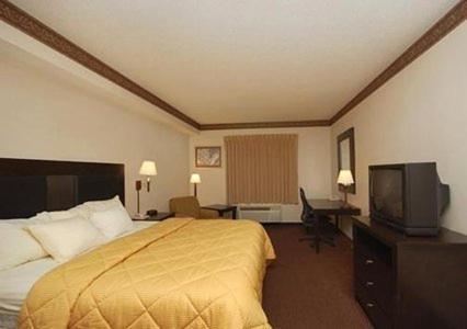 Comfort Inn & Suites Seguin Photo