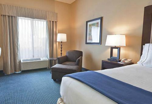 Holiday Inn Express Hotel & Suites - Novi Photo
