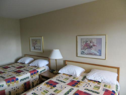 Homestyle Inn and Suites Springfield Photo