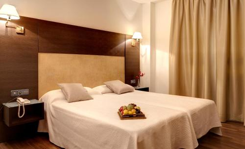 Hotel Madrid Torrejon Plaza
