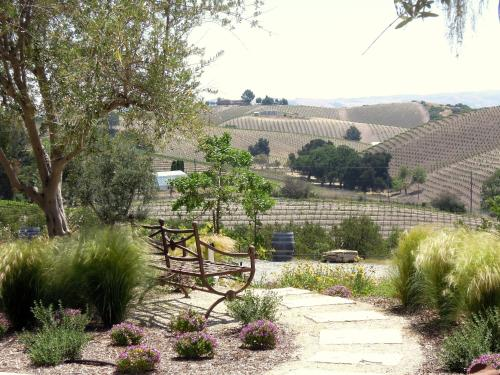 Croad Vineyards - The Inn Photo