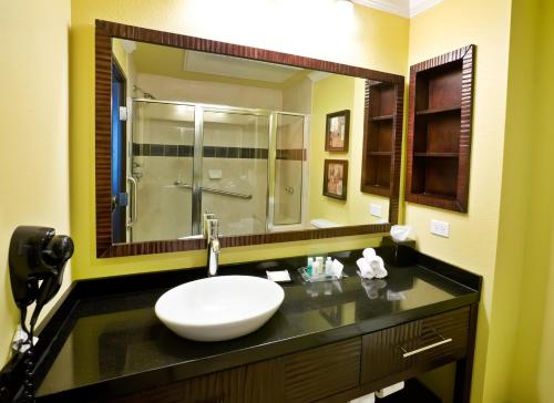 Holiday Inn & Suites McKinney - Fairview Photo