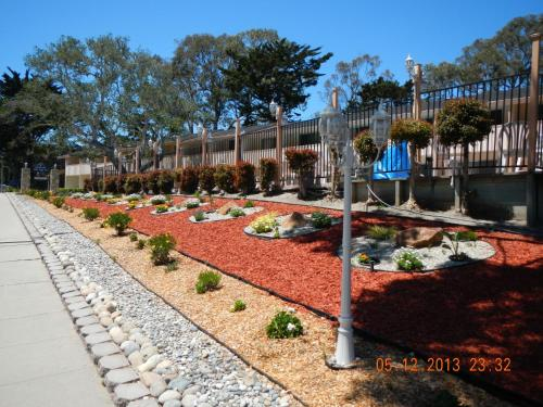 Americas Best Value Presidents Inn Monterey Photo