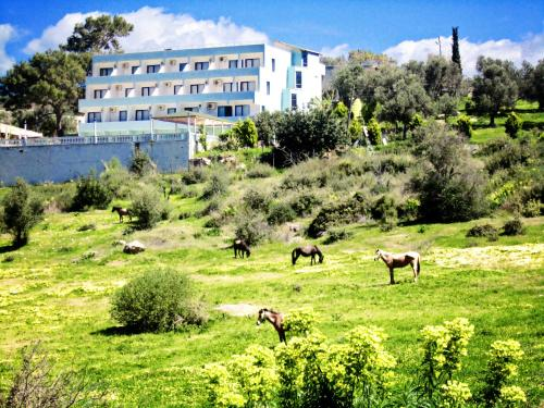 Patara Ince Hotel how to get