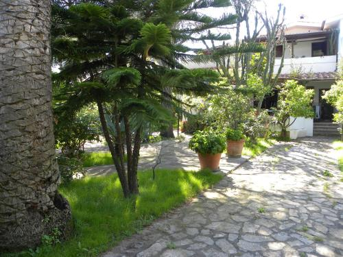 Bed & Breakfast B&B Casa Orazio