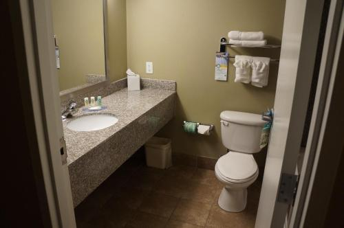 Quality Inn & Suites Near Fairgrounds Ybor City - Tampa, FL 33605