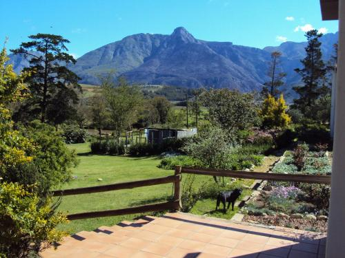 Wildebraam Berry Estate Photo