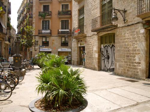 Hostal Nitzs Bcn photo 23