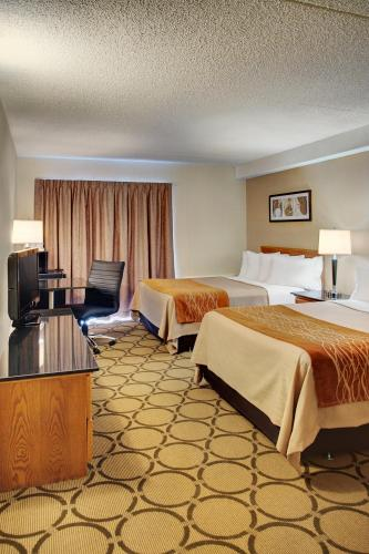 Comfort Inn Edmonton West Photo