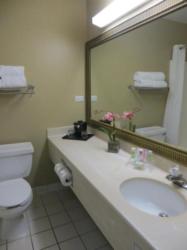 Country Inn and Suites Gurnee Photo