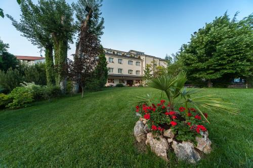 Picture of Albergo La Primula