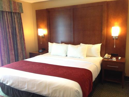 Comfort Suites Chicago - Oakbrook Terrace Photo