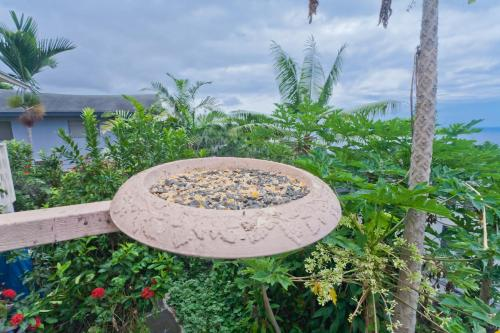 Simple Kona Guest House Photo